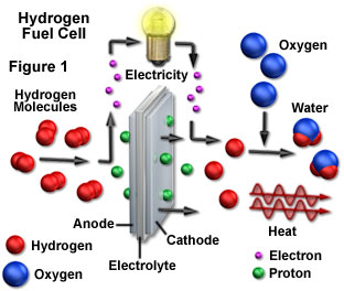 fuelcell_1
