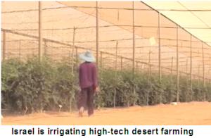 desert_farming