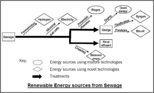 sewage1