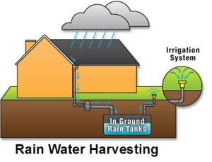 rain_water_harvestingt